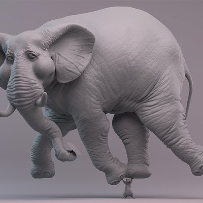 Rudy massar the amazingly light weighted elephant clay
