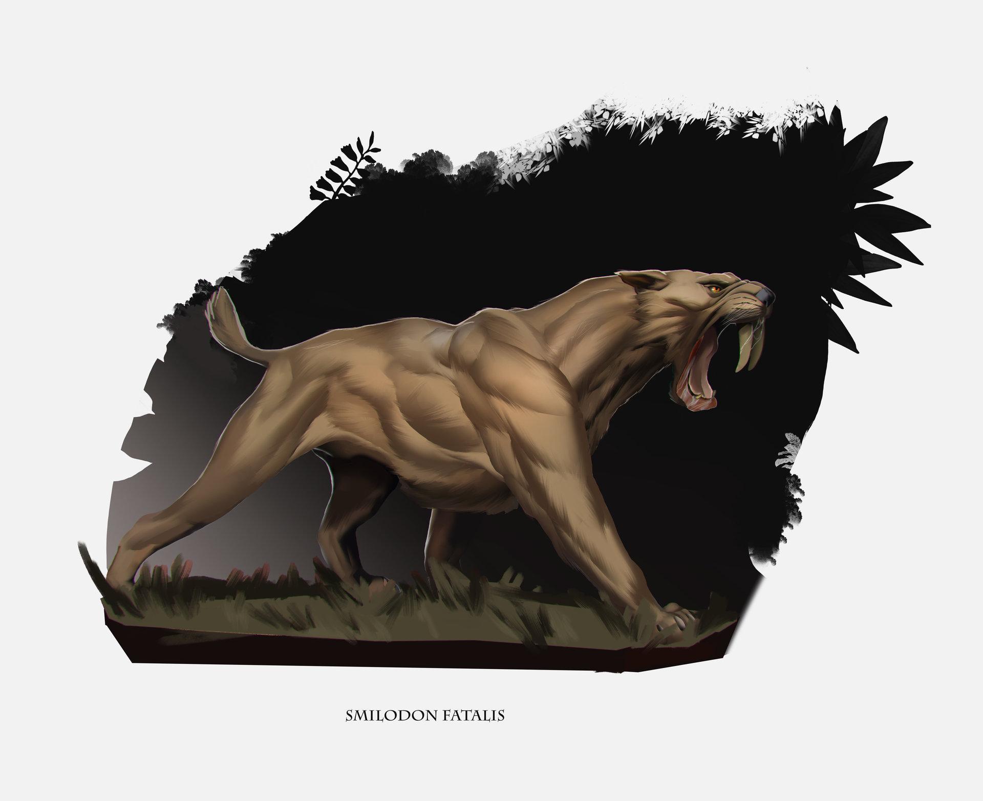 Lucaciu roland tigerr