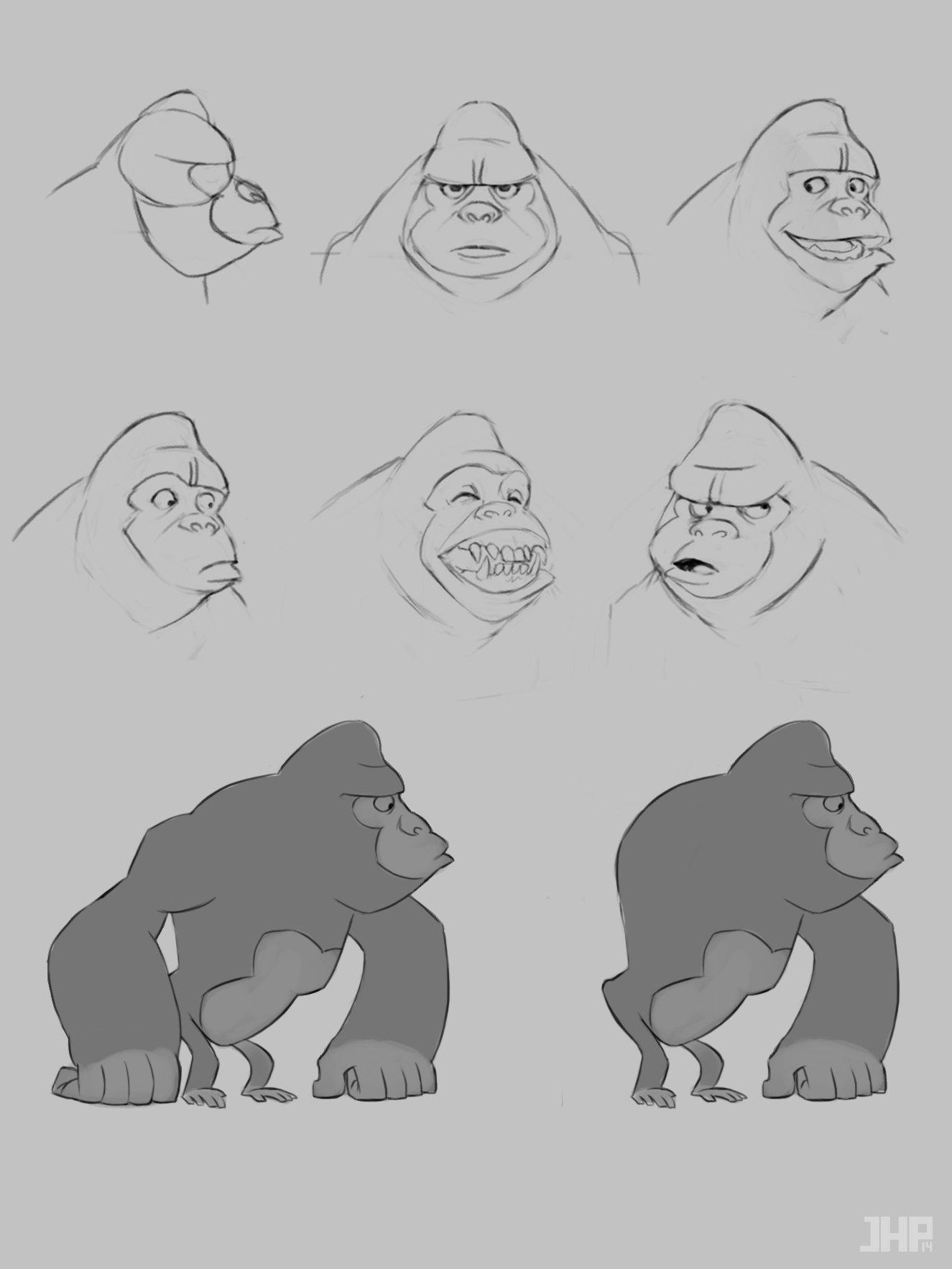 Joao henrique pacheco gorila 2