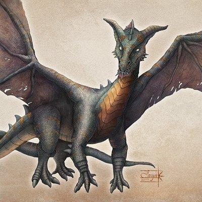 Aishwaary anant dragon