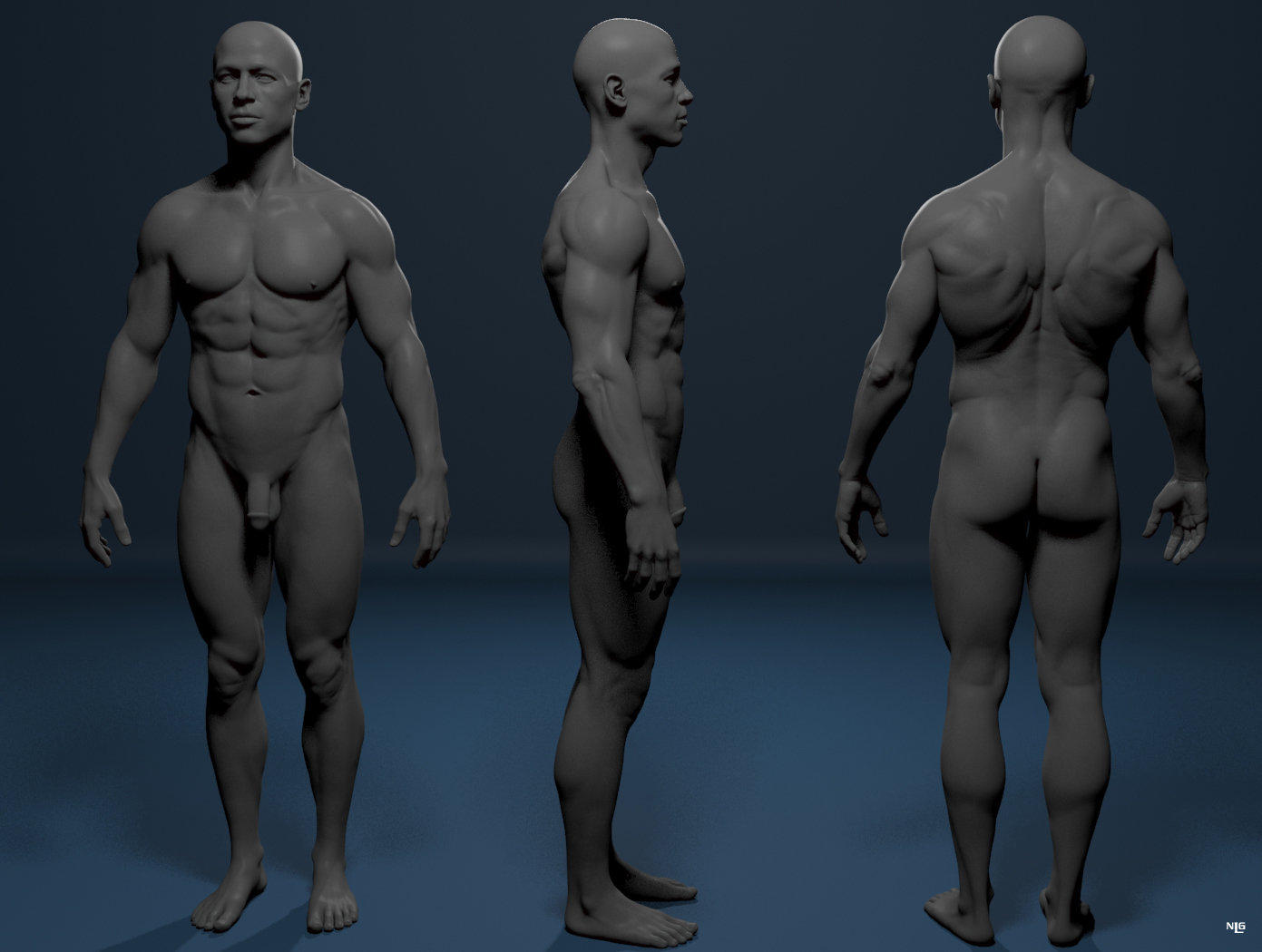 Nacho Lapuente - Male anatomy 2 wip