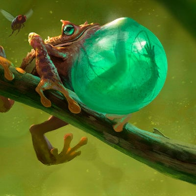 Stephen stark frog