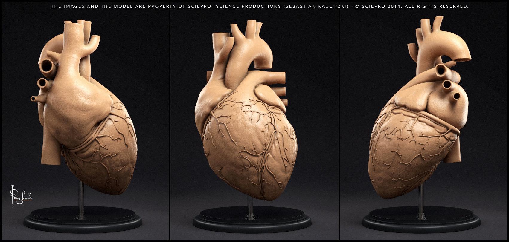 Parag lavande heart clay render