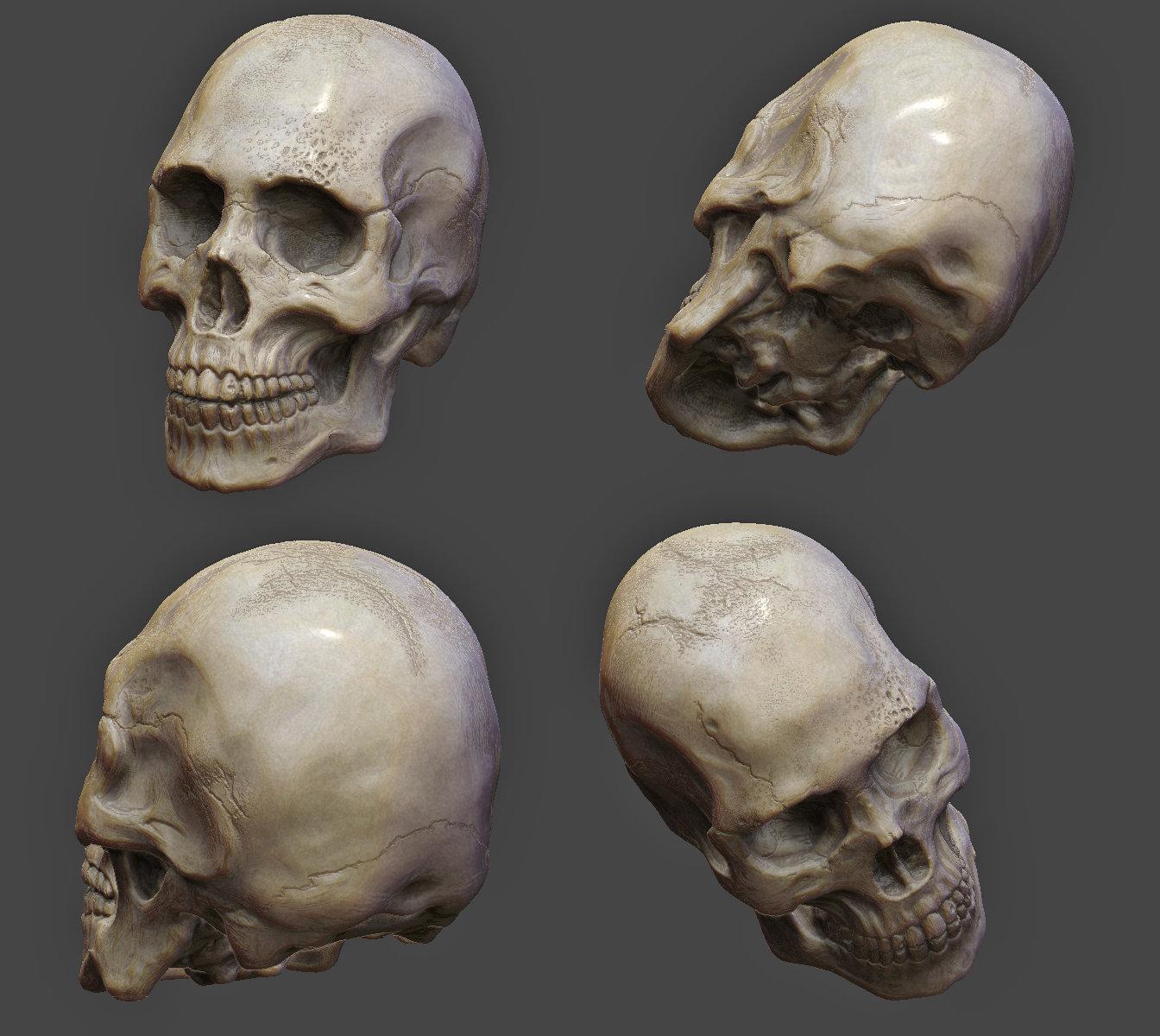 Virendra pratap singh skull wip