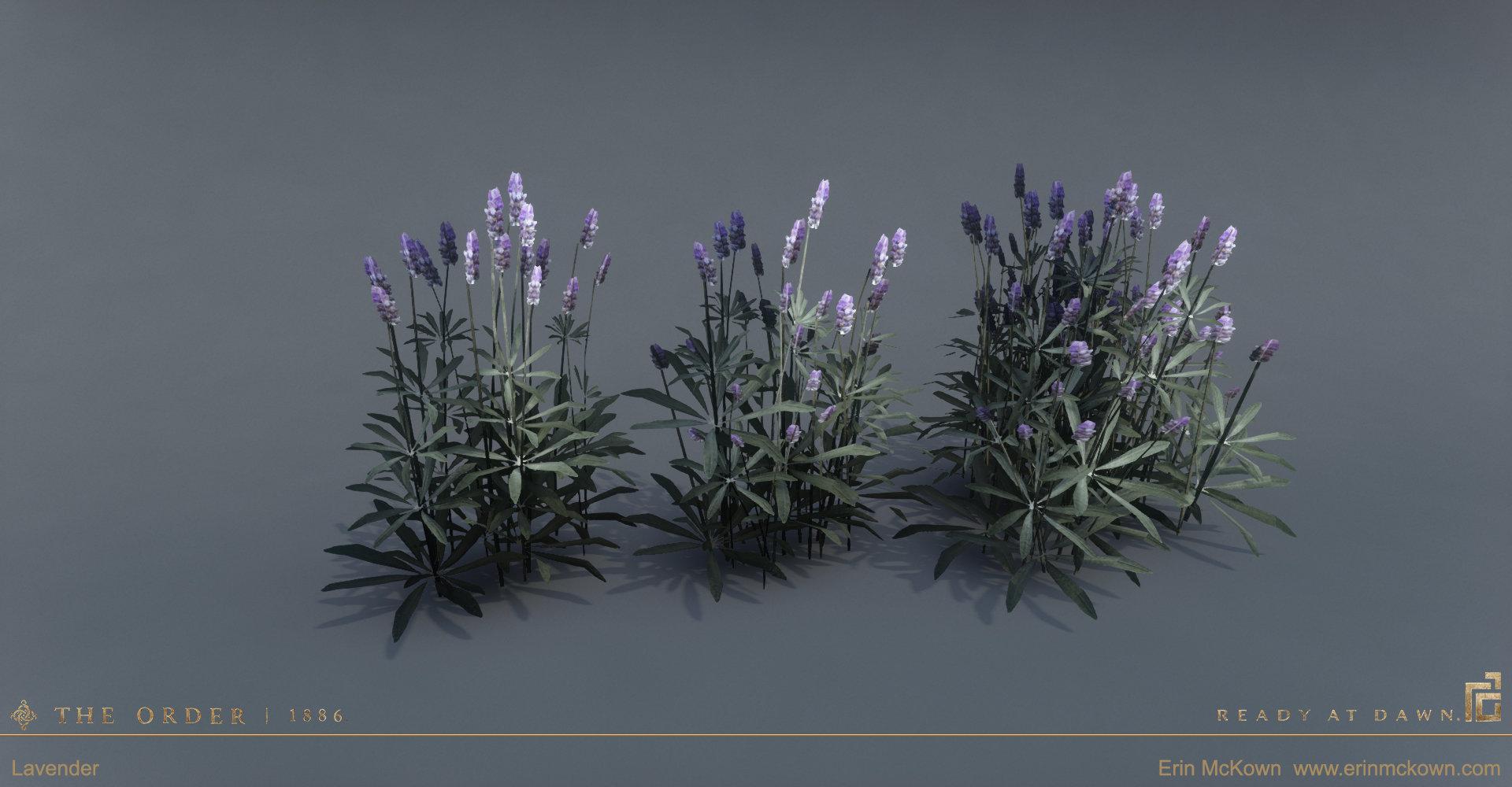 Erin mckown lavender