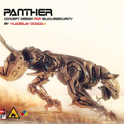 Vladislav ociacia panther in desert 6