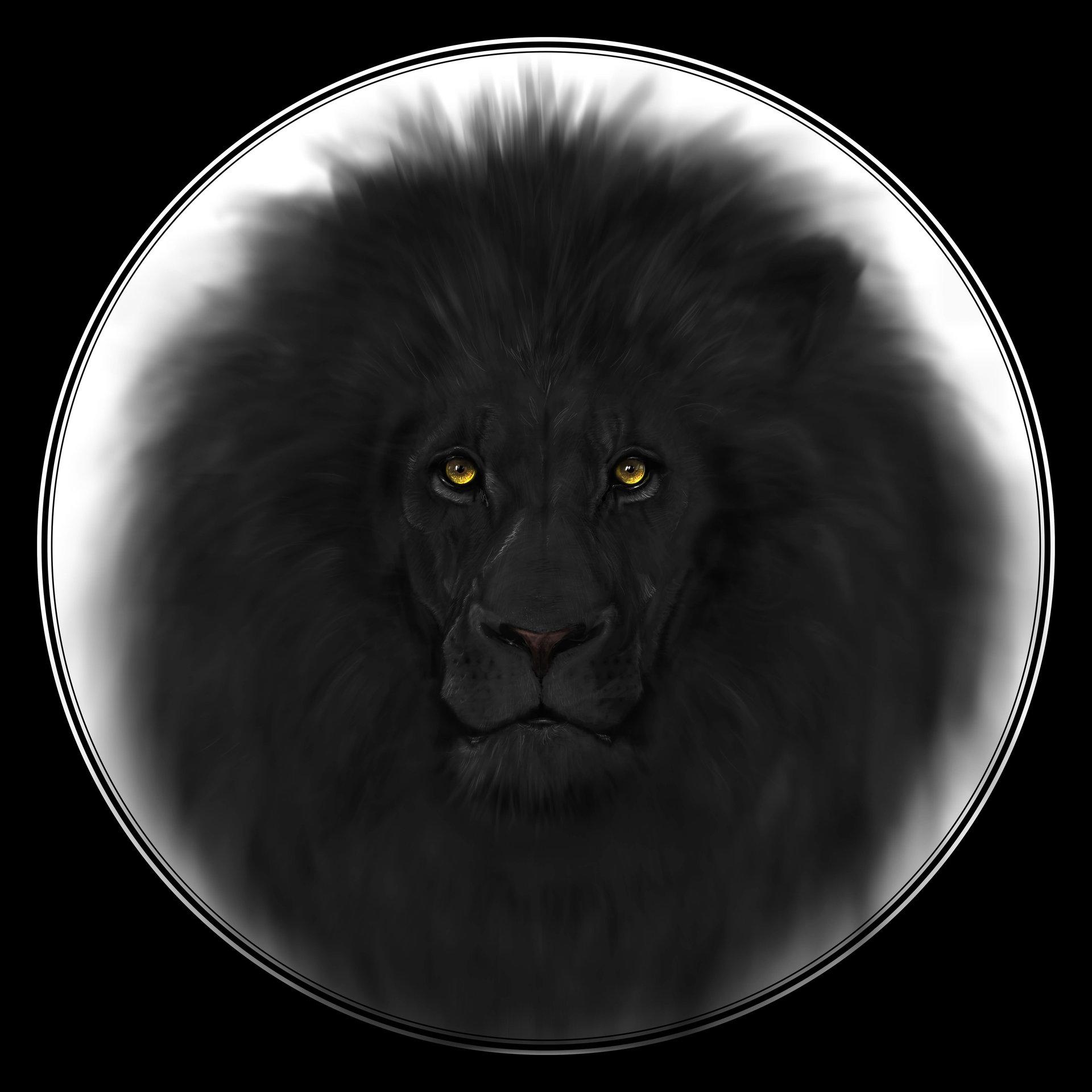 редкий черный лев картинки картинка