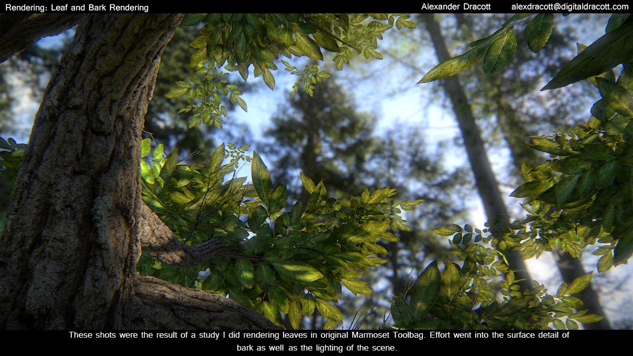 Alexander dracott render tree 01