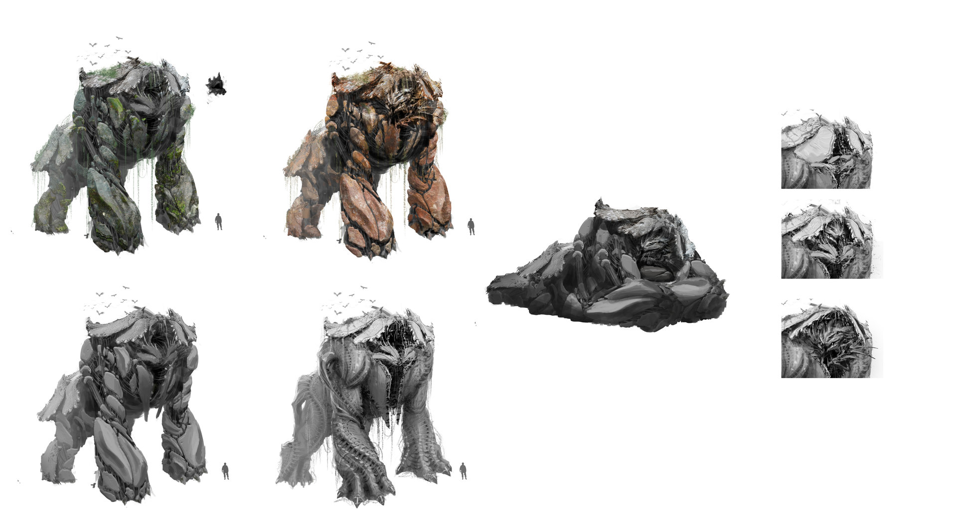 Tu bui mammoth sketches