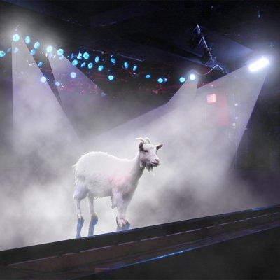 David roberson stage goat www