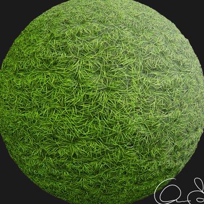 Oskar selin grass material