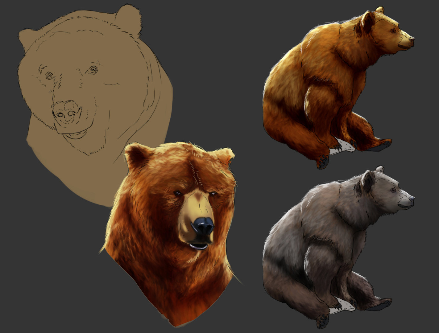Konrad langa bear sketches2