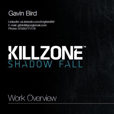 Gavin bird kz 1