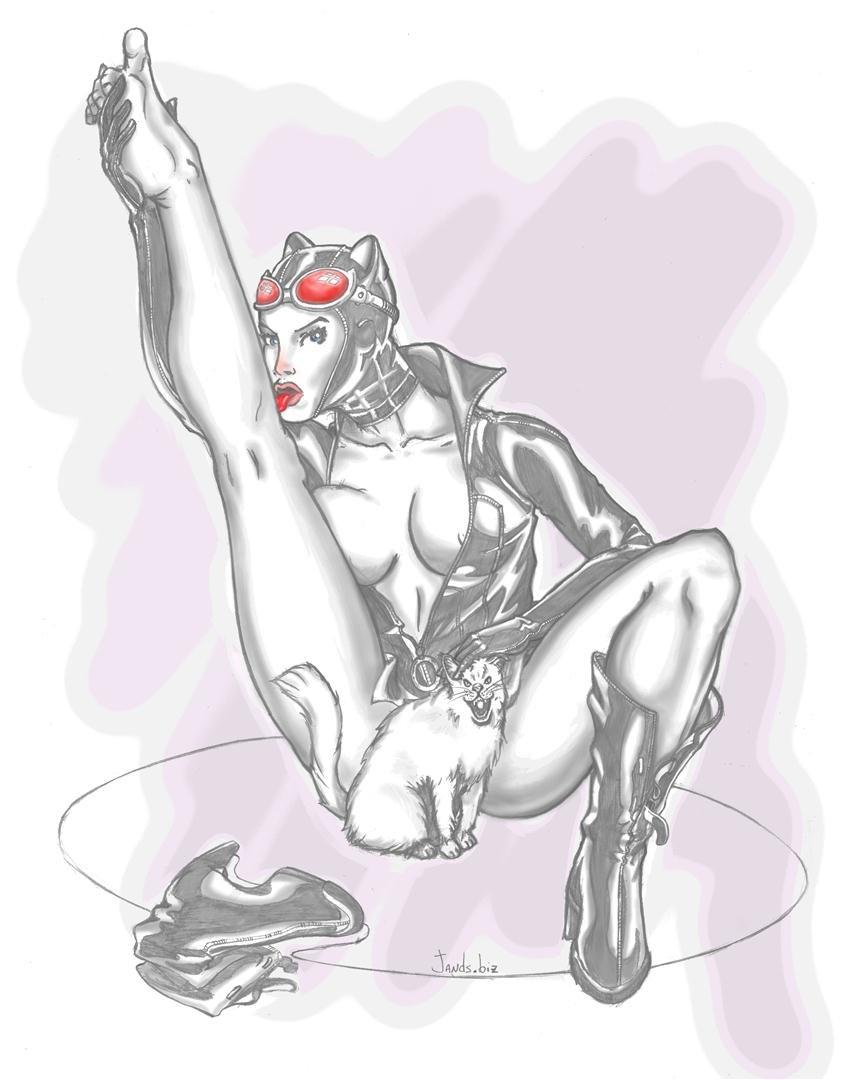 Janderson bittencourt dos santos catwoman jands large