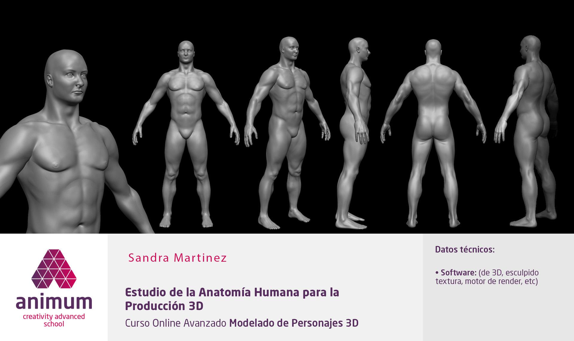 Sandra Martinez - 3D MODELS