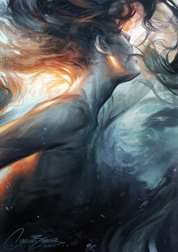 Charlie bowater submerge by charlie bowater d8063sy