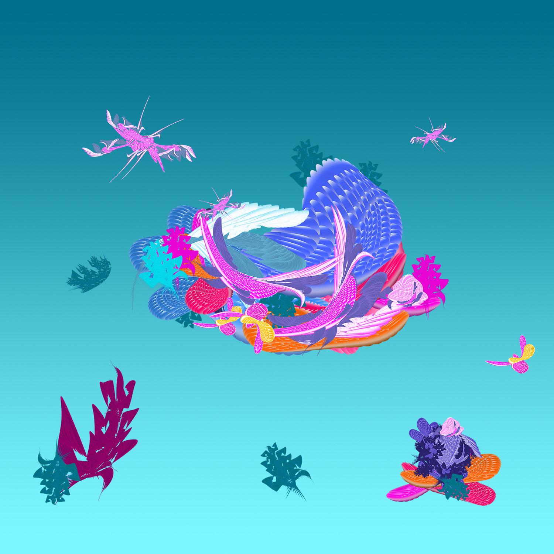 Elif ciftcioglu thumbnail oceanshell