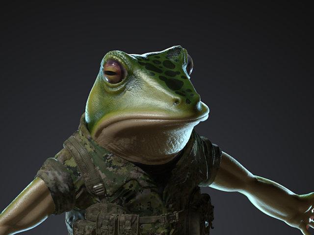 Sendoa bergasa frog wip 017