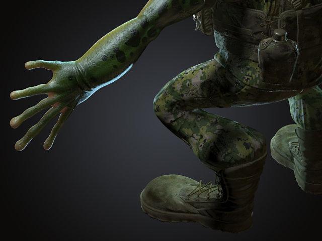 Sendoa bergasa frog wip 019