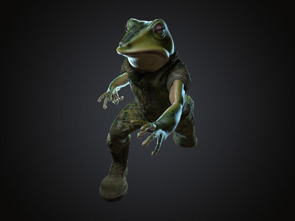 Sendoa bergasa frog wip 040