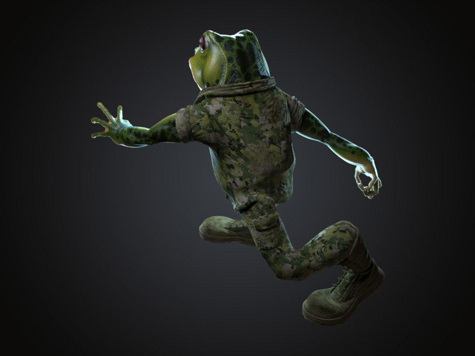 Sendoa bergasa frog wip 042