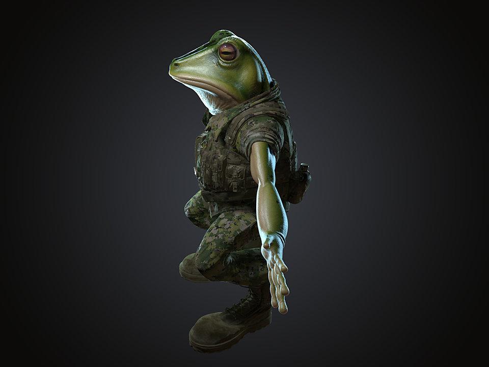 Sendoa bergasa frog wip 013