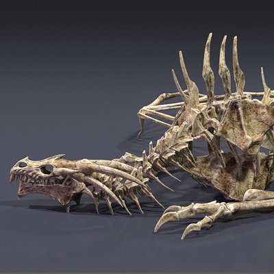 Audrey wong dragon skeleton