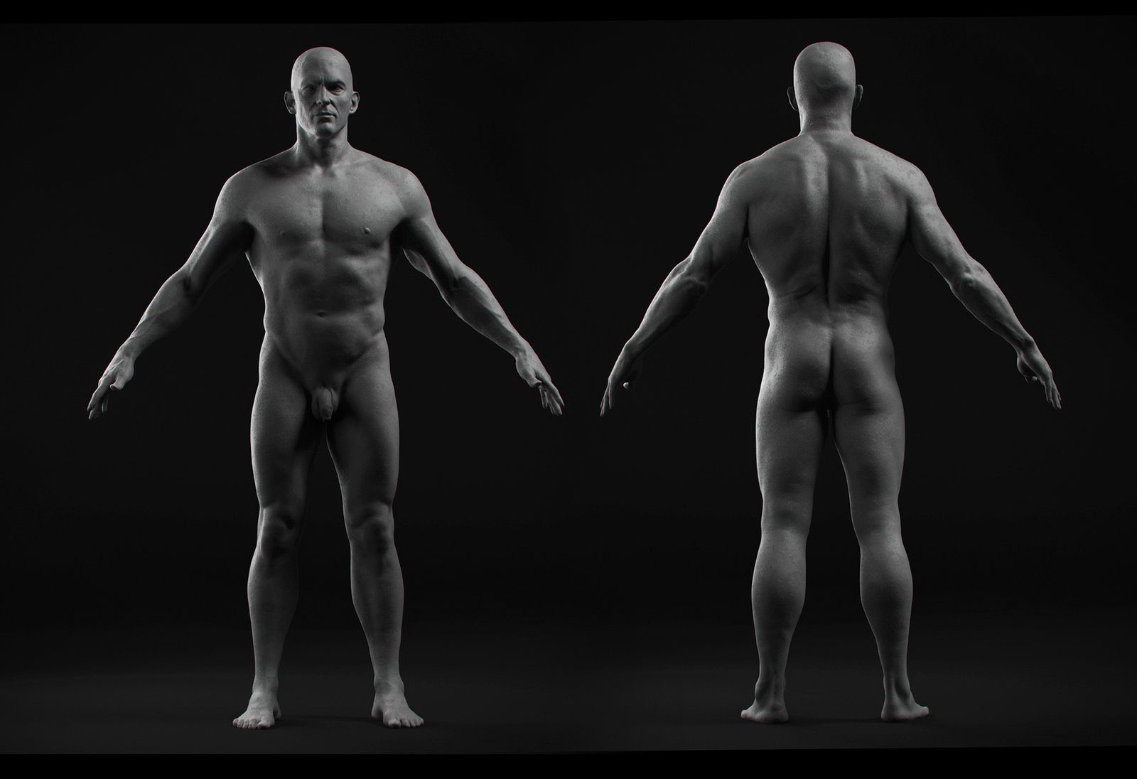 """El matador"" Anatomy Base"