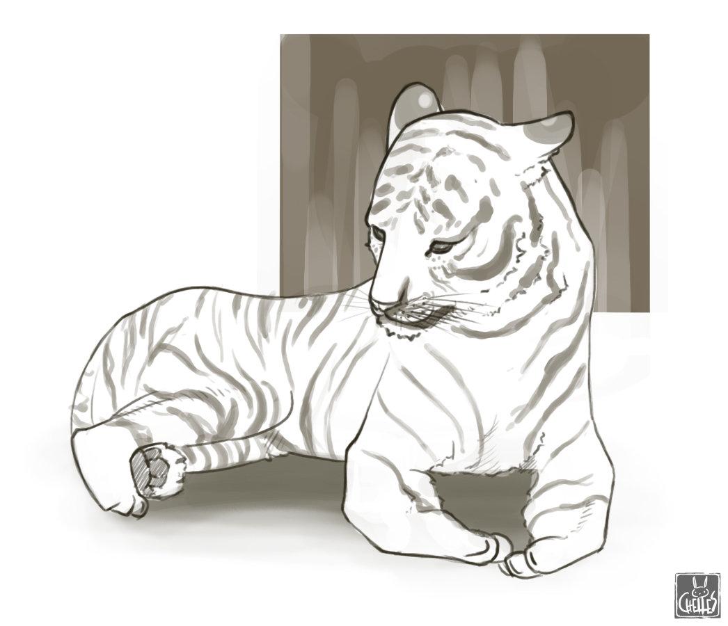Michelle lo wk08 tiger 02