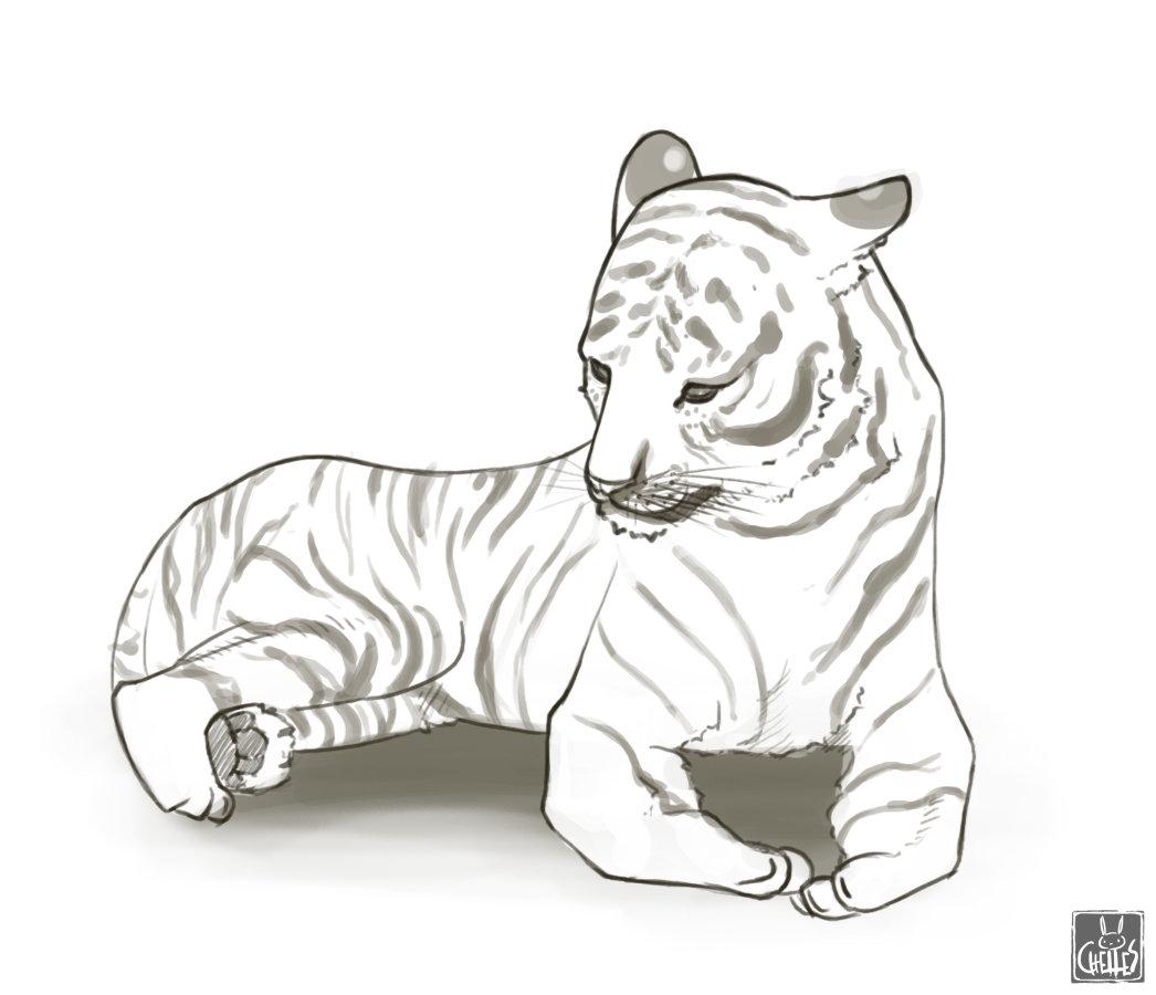 Michelle lo wk08 tiger 03