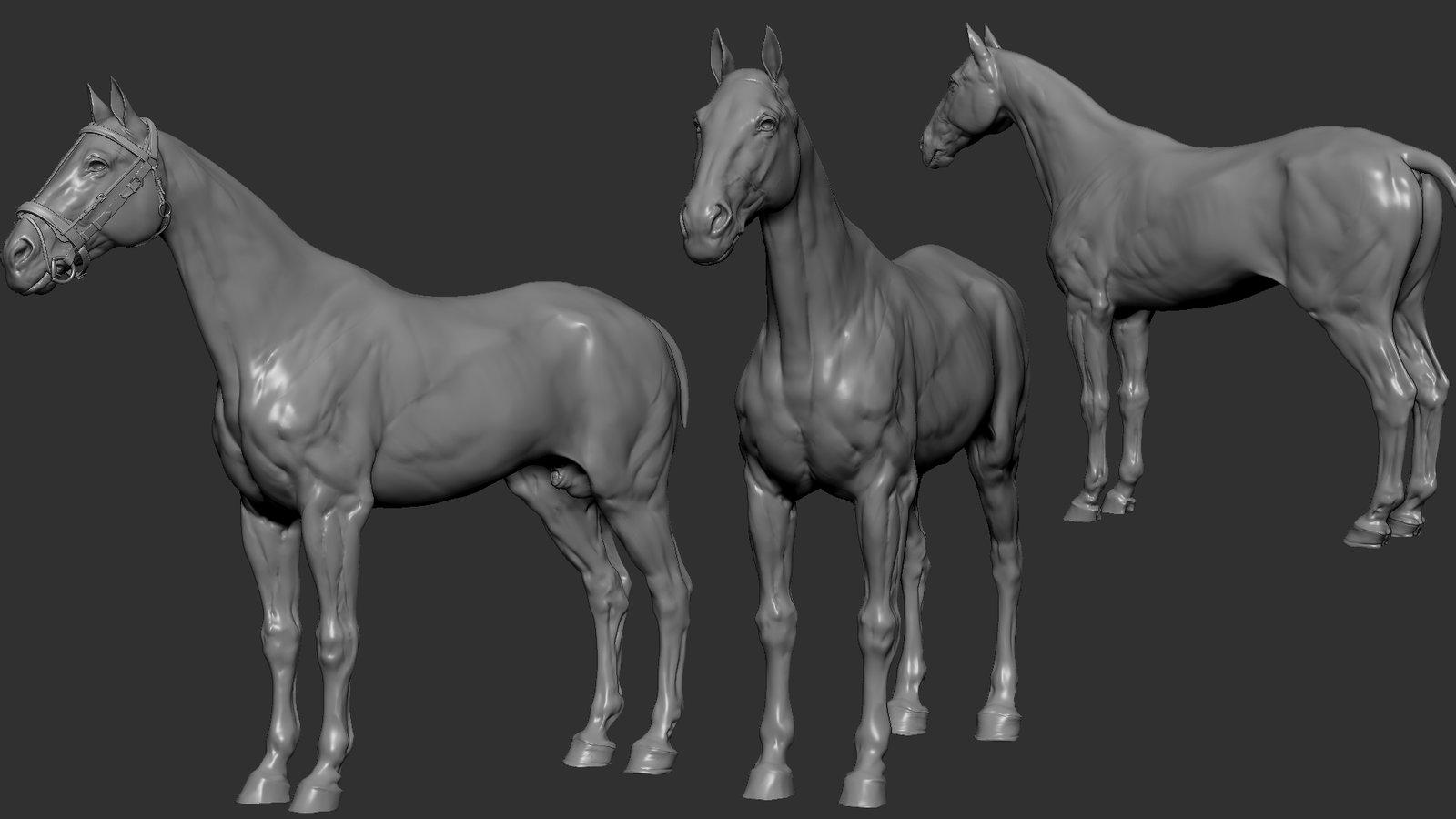 Sculpting the horse