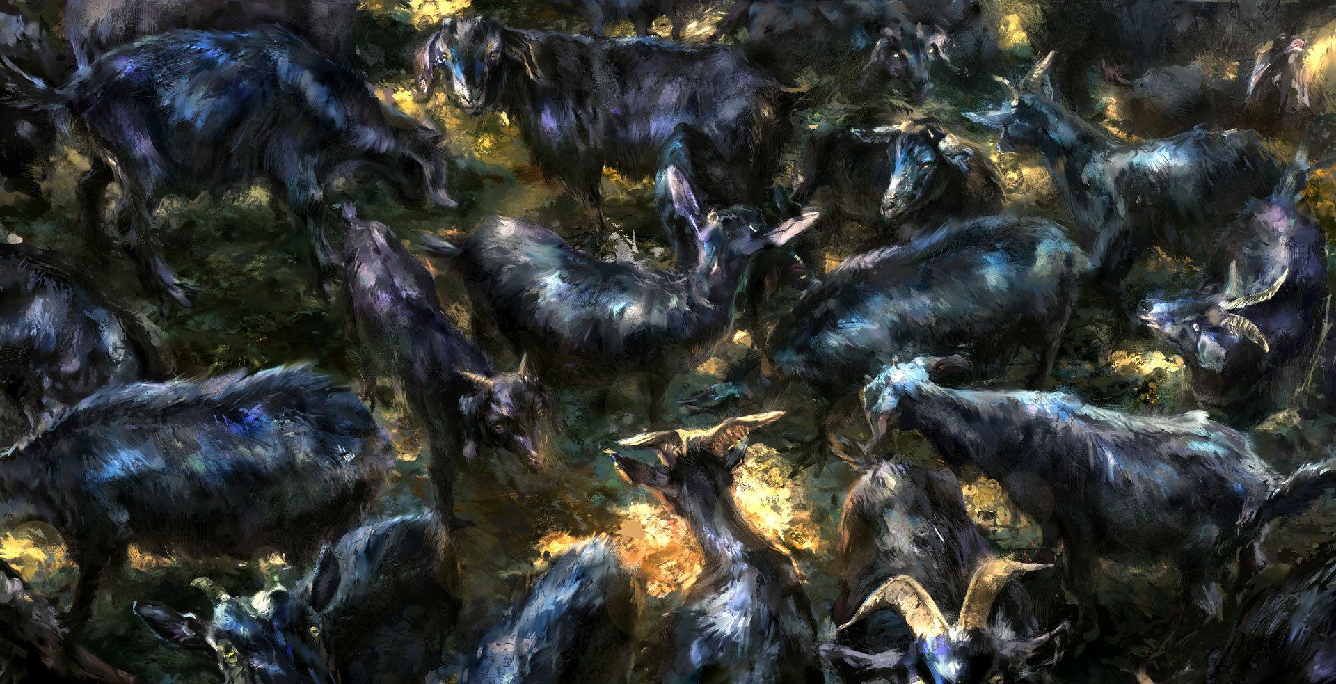 Jakub javora kozy 1080