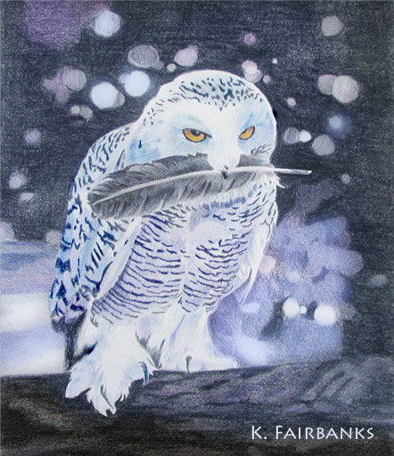 Owl color pencil drawing (this version has been digitally enhanced to heighten color)