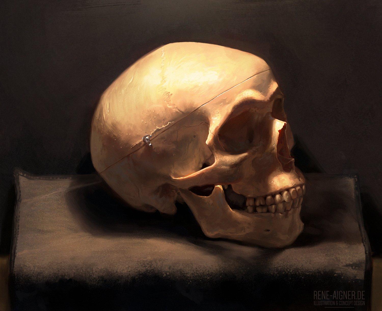 Rene aigner skull