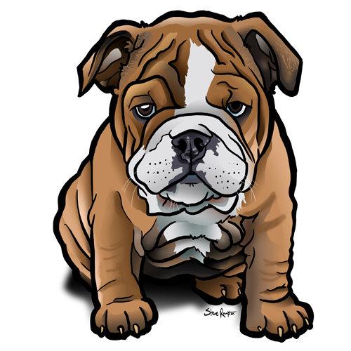 Steve rampton bulldog puppy