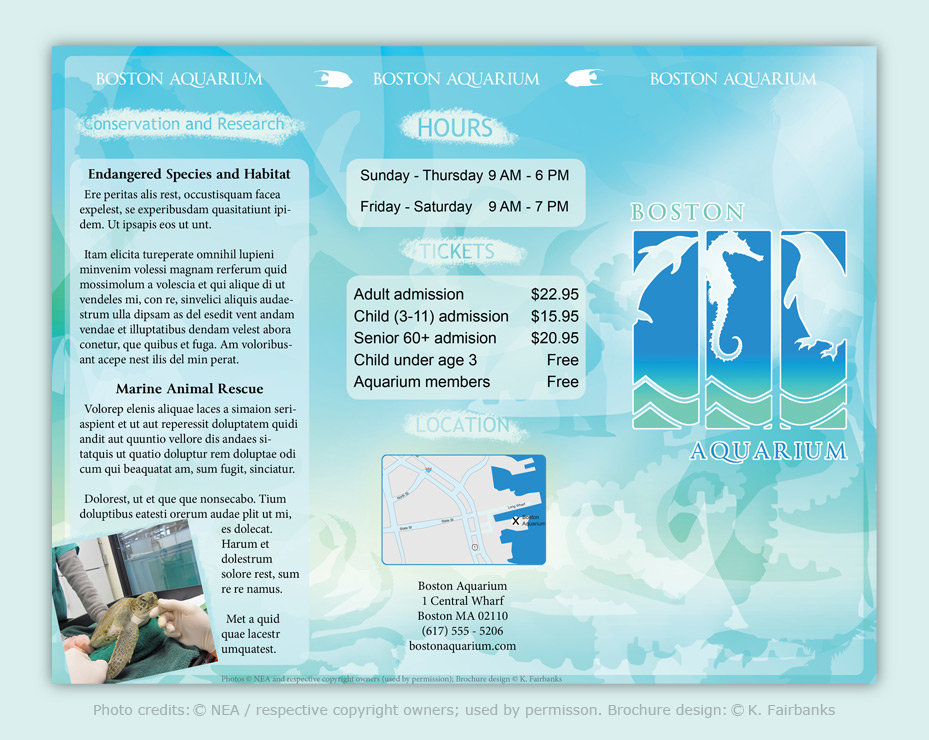 Brochure: Front. Created and Designed by K. Fairbanks / Media: InDesign (for text and page layout); Illustrator (for drawings); Photoshop (photo image editing)