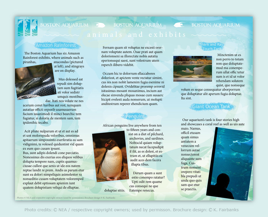Brochure: Back. Created and Designed by K. Fairbanks / Media: InDesign (for text and page layout); Illustrator (for drawings); Photoshop (photo image editing)