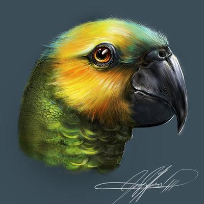 Josiah herman bird3 signed version