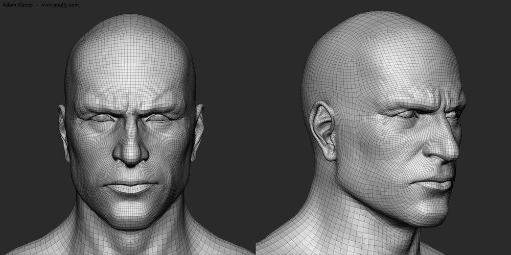 Adam sacco head study wireframes by adam sacco