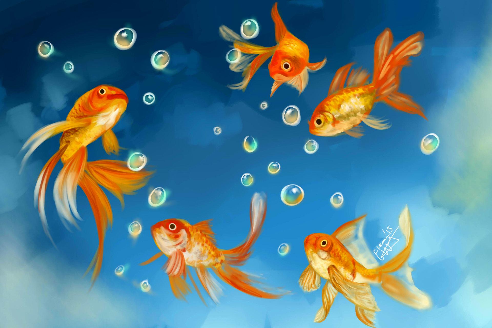 Открытки золотые рыбки, открытка своими