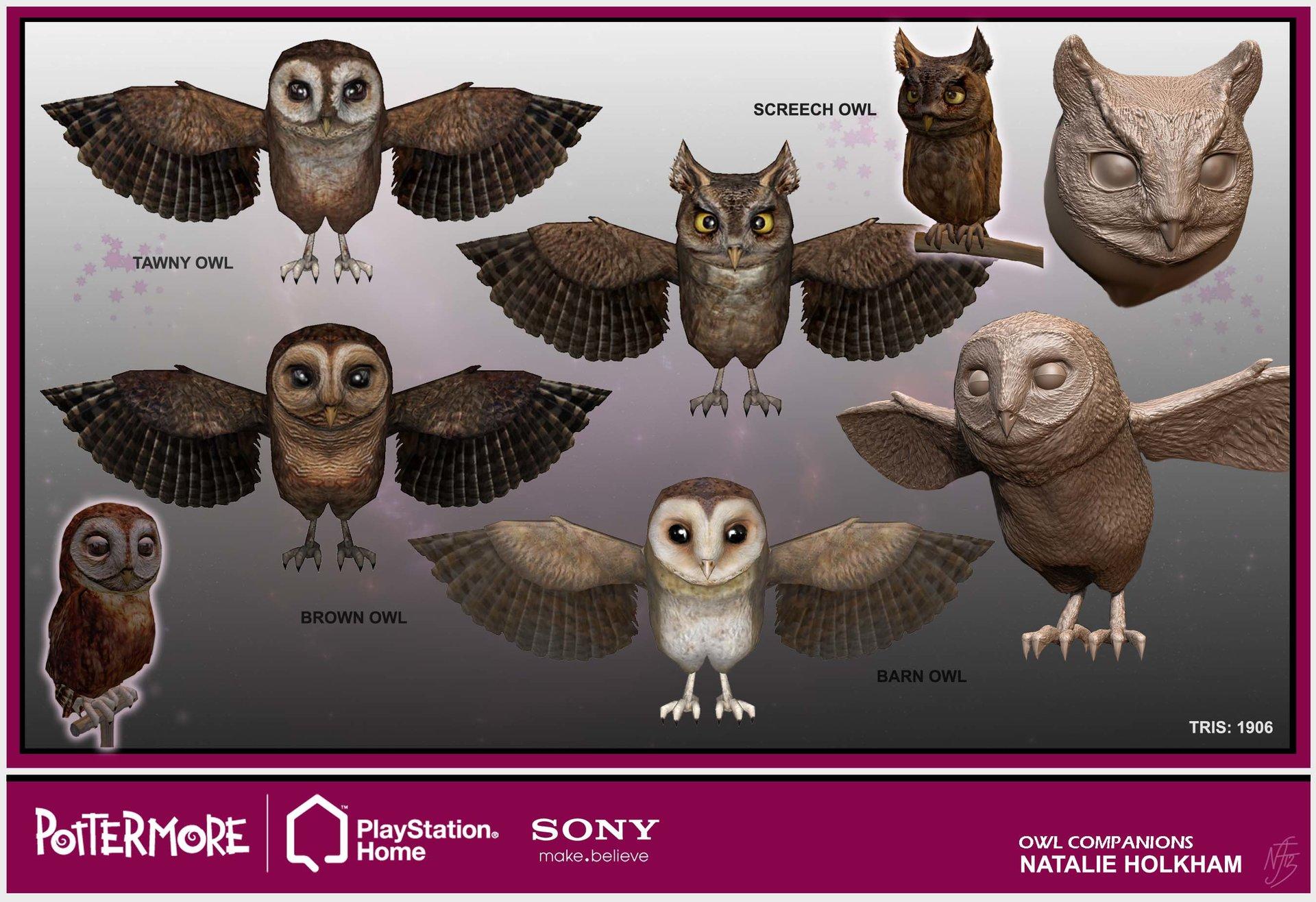 Natalie holkham pm portfolio owlcompanions