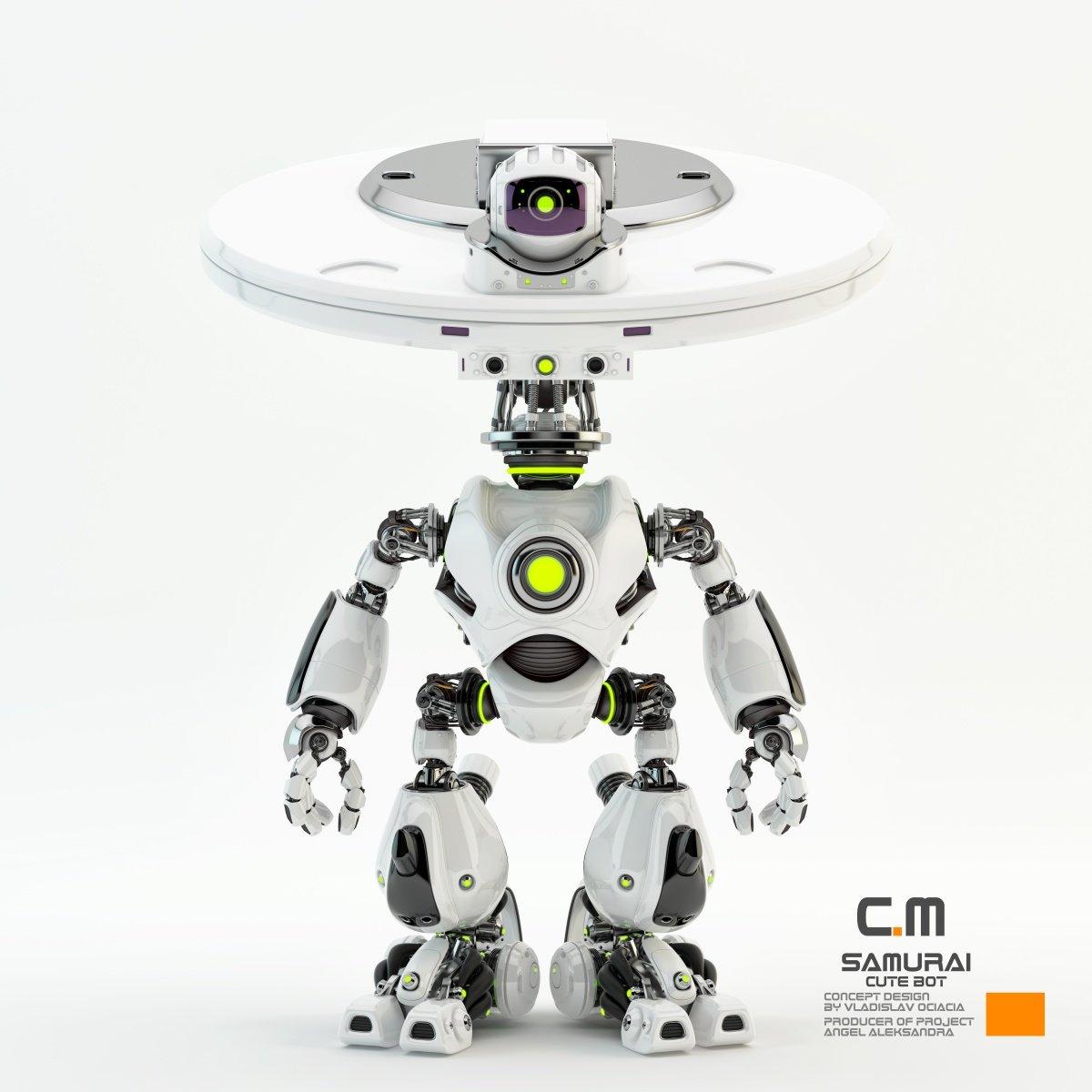 Vladislav ociacia samurai robot 4