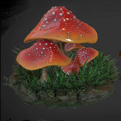 Daniel hull mushroom rock
