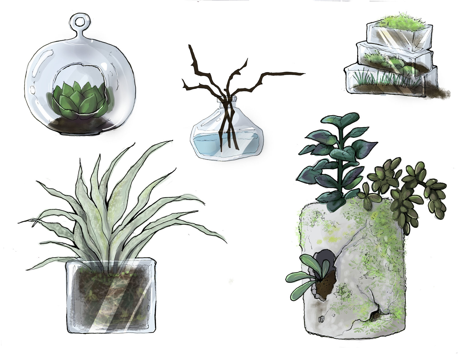 """""""Nahlah's Plants"""". She likes to garden on her greenroof to color up the urban Sun Shard City."""
