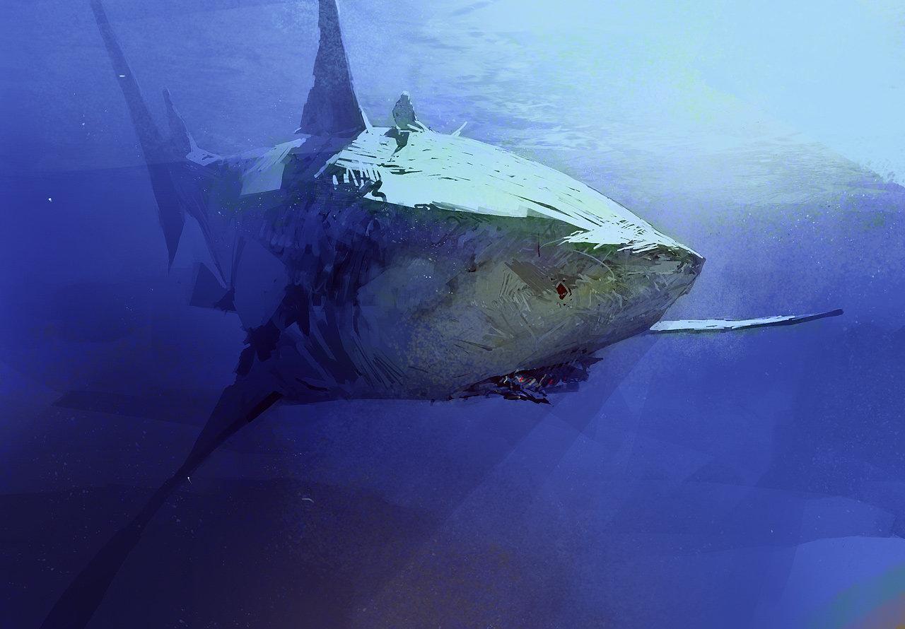 Sergey kolesov shark