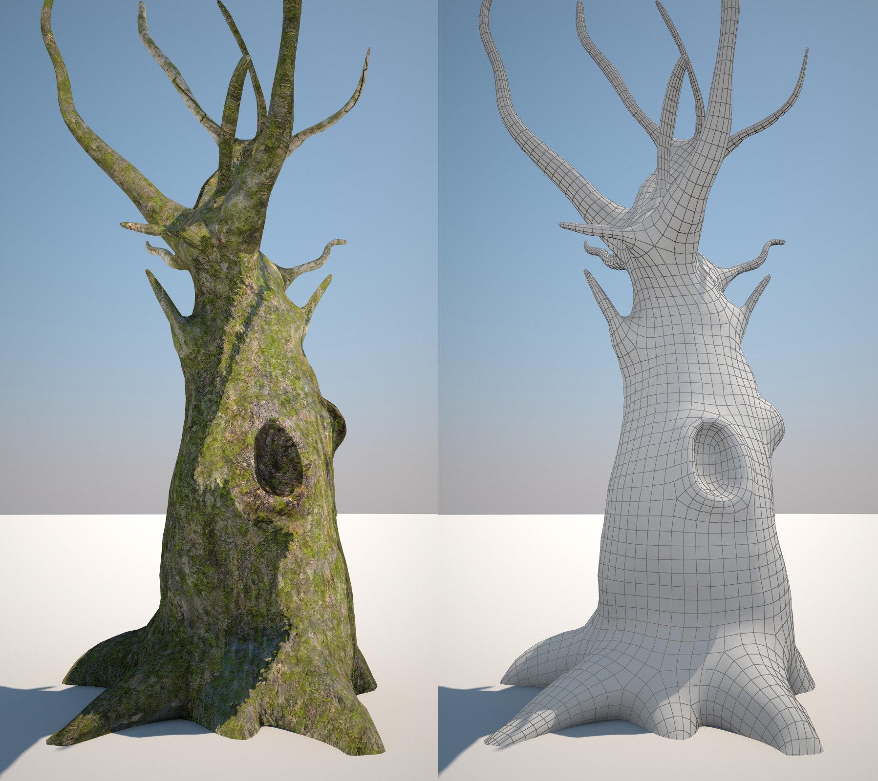 Tomasz wieczorkowski drzewo2