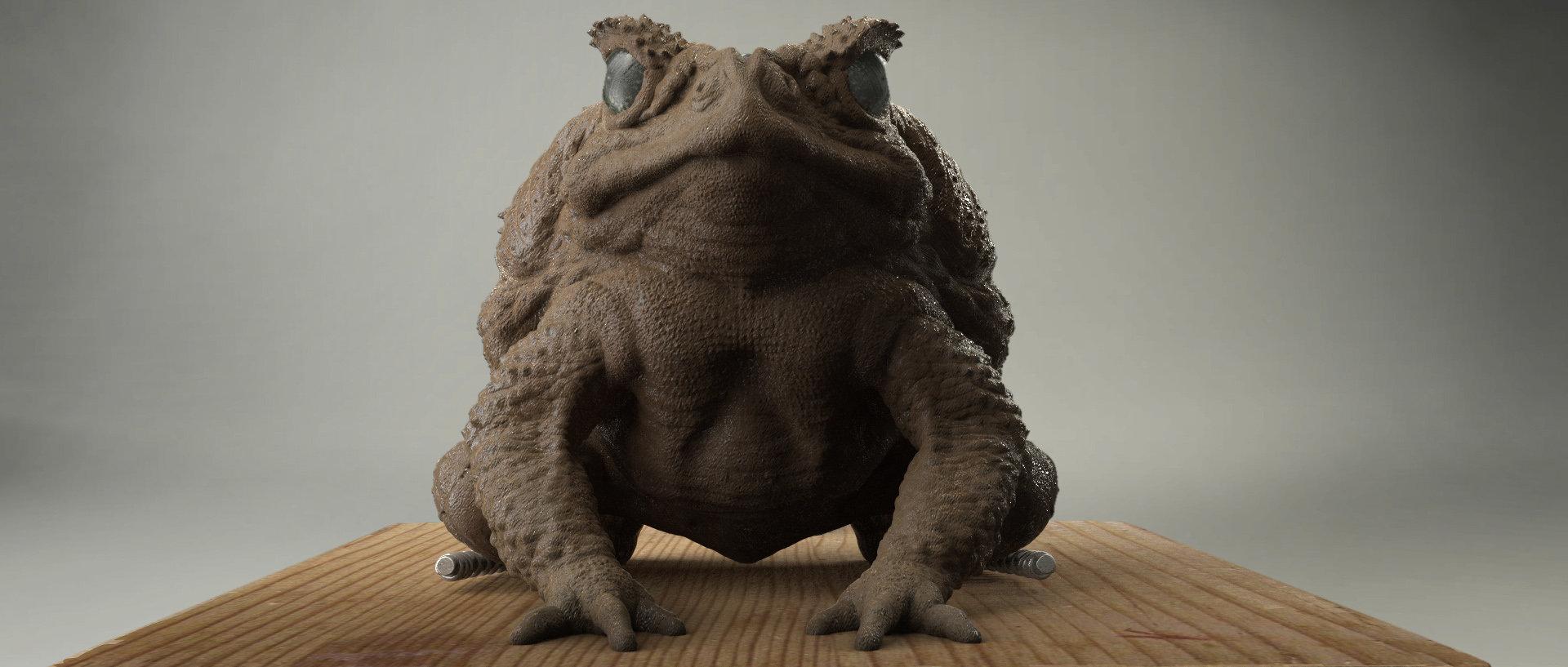 Jin hao villa toad frntal fin