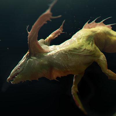 Nandor moldovan fishy