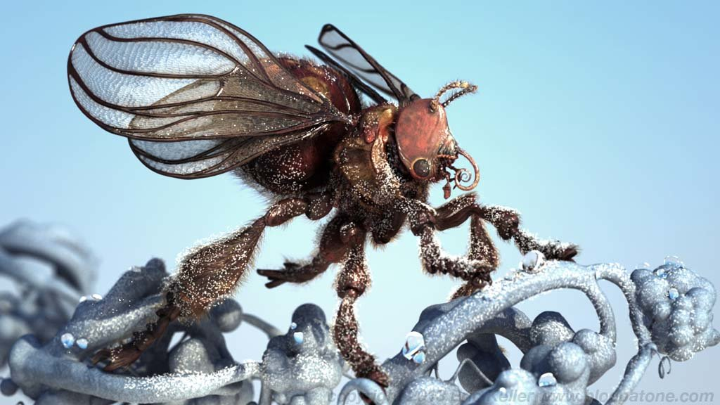 Eric keller thalianbee fullrender01