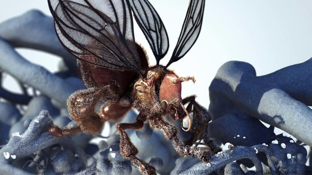 Eric keller thalianbee fullrender04
